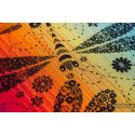 Echarpe Lennylamb - Dragonfly Rainbow Dark (100% coton)