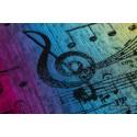 Echarpe Lennylamb - Symphony Rainbow Dark (100% coton)